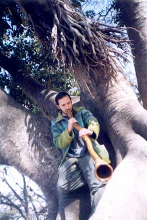 Myths and legends of the DIDGERIDOO